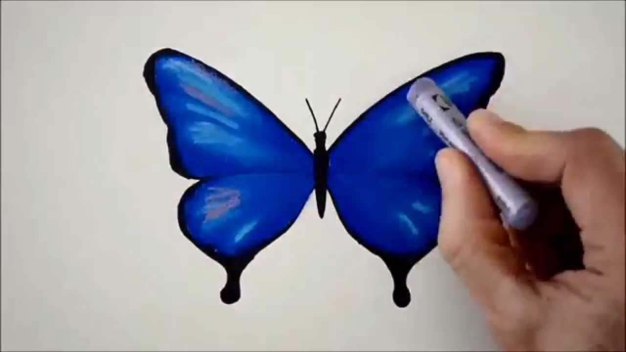 Mavi Kelebek Karakalem Boyama Youtube