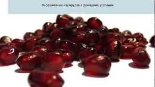 Домашнее производство: 5 прибыльных идей бизнеса(Возможности Рунета в твоем компьютере: http://invest-system-blog-silver-point.blogspot.com/ (загружено: http://www.youtube.com/user/alexander22za64), 2013-12-20T10:53:11.000Z)