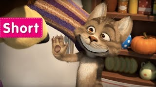 Masha and the Bear - Like Cat And Mouse  (Vacuum cleaner)