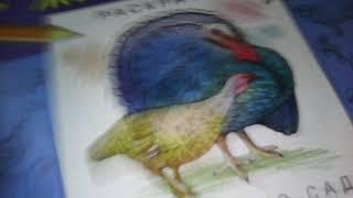 Домашние животные раскраска для детского сада видео