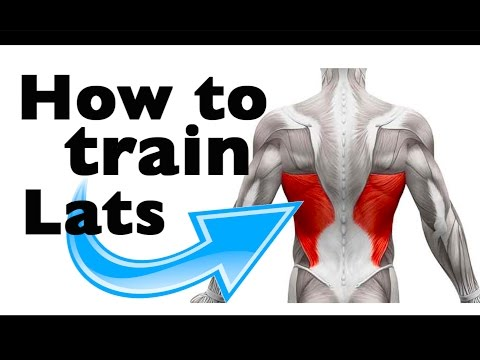 How to: Train the Latissimus Dorsi (11 gym exercises)