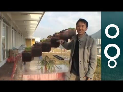 Hong Kong EcoCube - Recycling Food in Self-Sustaining Ecosystem - Hi-Tech