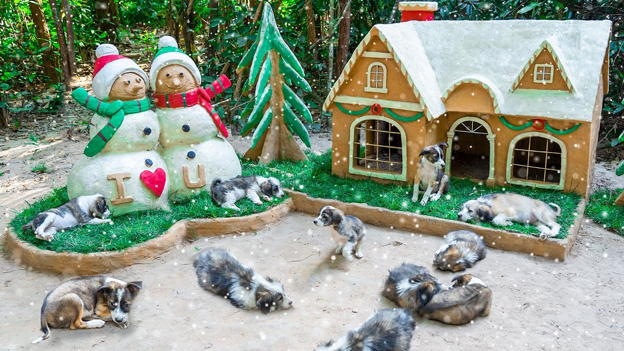 Build Amazing Christmas House For Adopting Puppies a Dog House a Dog Playground a Snowman