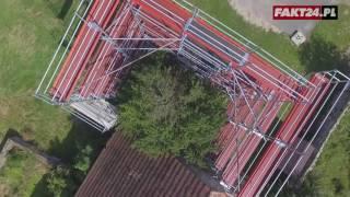 Najstarsze drzewo w Polsce Cis Henrykowski wymaga odnowy
