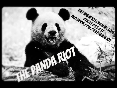 The Panda Riot - Russell Hicks, Ashley Haden, Aid Thompsin, Harry Eldrich, LJ Da Funk, The Poet