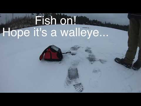 November 17th Update! Round Lake And Seagull Lake Ice Checks, Plus The First Fish Of The Season.