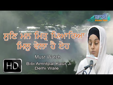 Bibi-Amritpal-Kaur-Ji-Delhi-Wale-At-Chander-Vihar-On-2-July-2017-8447771130