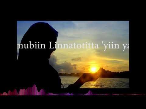 Sholatun Bissalamil Mubin + Lirik | Sholawat dan Ngaji