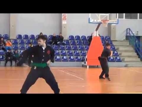 Torneo kung fu Logroño 2014 (1 de 2)