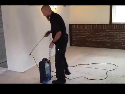 Carpet Cleaning Steps