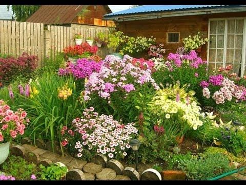 Яркие цветники украсят ваш сад! Красивые идеи для дачника