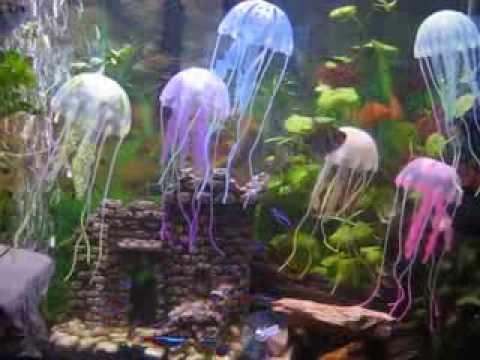 m duse d 39 aquarium effect lumineux effect glowing youtube. Black Bedroom Furniture Sets. Home Design Ideas