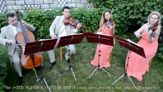 "VIVO QUARTET - ""How Deep Is Your Love "" -  ВИВО КВАРТЕТ"