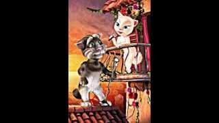 Копия видео Песня кот Том ы Анжела