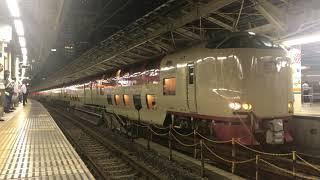 【285系サンライズ出雲・瀬戸】ミュージックホーン鳴らし東京駅発車
