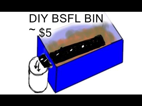 Diy Black Soldier Fly Larvae Bin 5 10 Simple Cheap Bsfl
