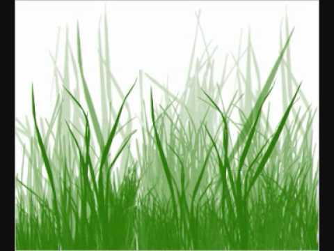 100blumen - grassroot symphony.wmv