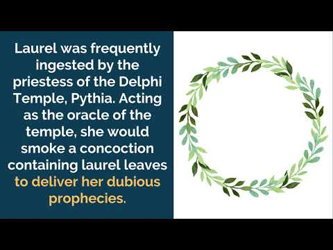 Laurel Wreath, Its Meaning and Origins As a Symbol