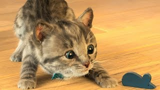 Little Kitten & Friends - Learn with the cutest cat! (Fox and Sheep) Part 19 - Best App For Kids