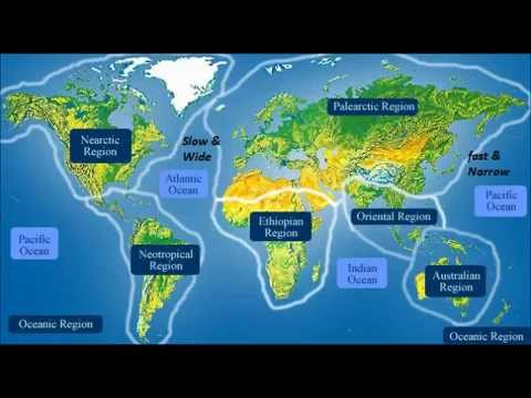 Major ocean currents youtube major ocean currents gumiabroncs Image collections