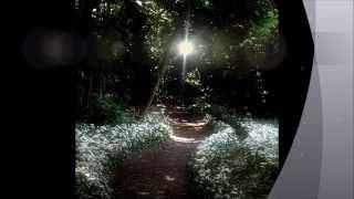 Fairy Tale Fusion- Teaser Trailer