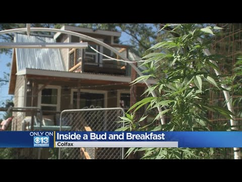 Placer County Bud And Breakfast Creates Unique Marijuana Opportunity