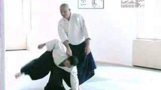 Principes d'aïkido - Stéphane Benedetti (Trailer)