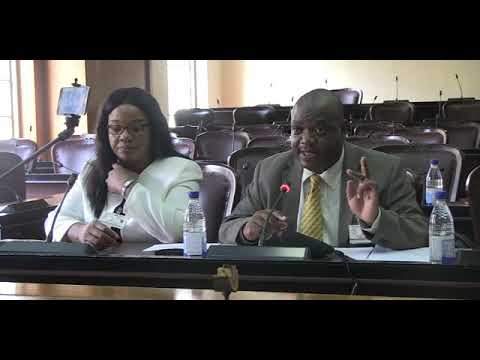 Chivayo solar deal corruption at the highest level EXPOSED in Parliament