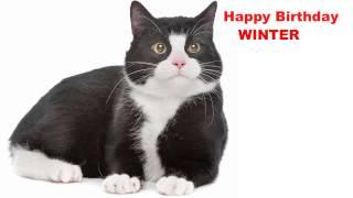 Winter  Cats Gatos - Happy Birthday
