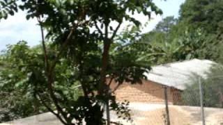 Viaje Misionero a las montañas de Guerrero Sn Miguel el progreso