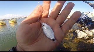 Mersin Balık Avı... Deniz bozuksa eğlenmek için bir yol mutlaka vardır...