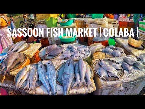 Sassoon Fish Market | ससून फिश मार्केट | Colaba |