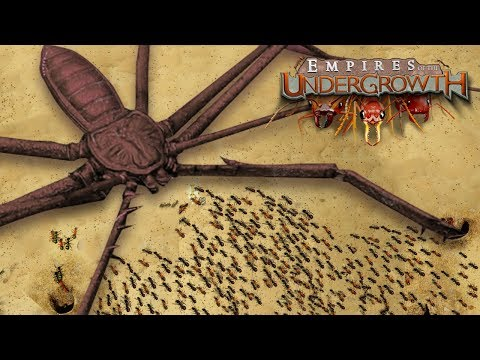 Thats A Big Bug!!! | The Leaf Cutters - Empires Of The Undergrowth - Ep9