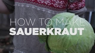 How to make REAL Sauerkraut, only three easy steps!