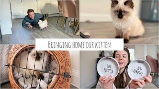 Bringing Home Our Ragdoll Kitten | WE GOT A KITTEN! | Kitten Essentials Haul~ First Day at Home ~