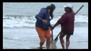 Планета рыбака - Выпуск 466 Ловля акул в Намибии.(В этом выпуске рассказывается о курортном городке Свакопмунд в Намибии. Основное увлечение местных жителе..., 2014-02-22T08:30:00.000Z)