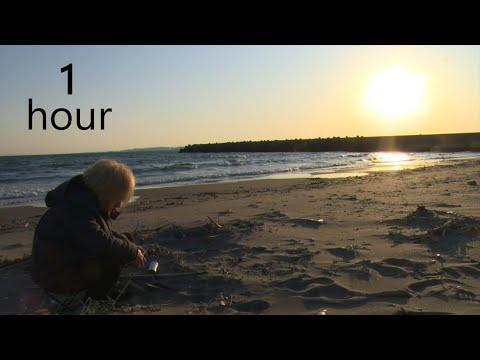 【鬼龍院】癒し&安眠のための波と日の入り動画1時間