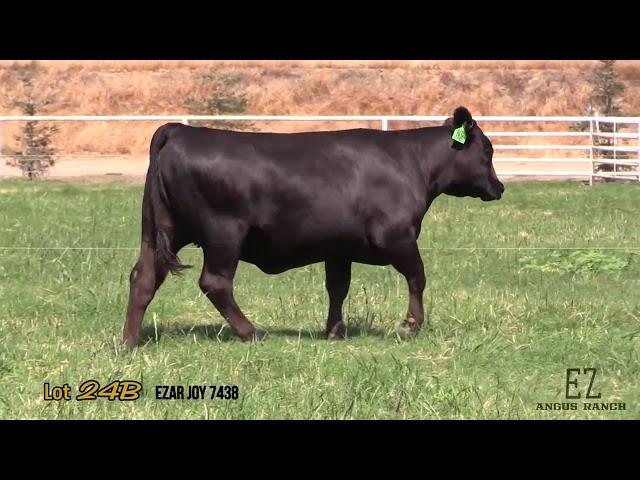 EZ Angus Ranch Lot 24B