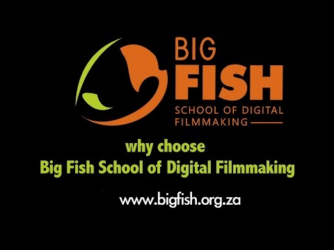 Why Choose Big Fish School of Digital Filmmaking