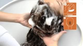 Demonstration: RS3 Shampoo Units & Shiatsu Shampoo Technique