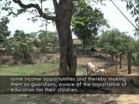 Hoste Hainse Documentary (2011)