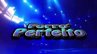DVD Forró Perfeito 12 anos