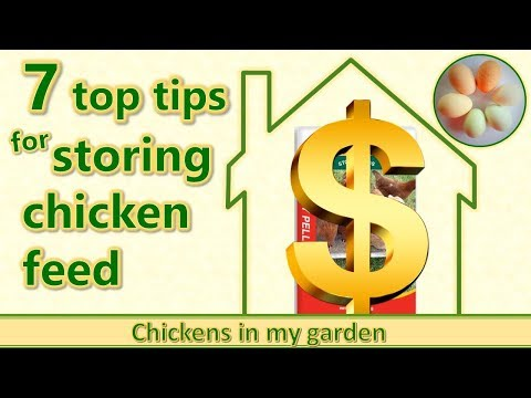 7 top tips for storing chicken feed