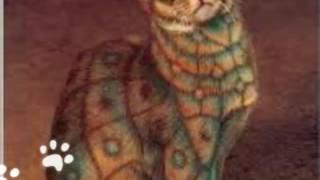 Самый необычный окрас кошек !