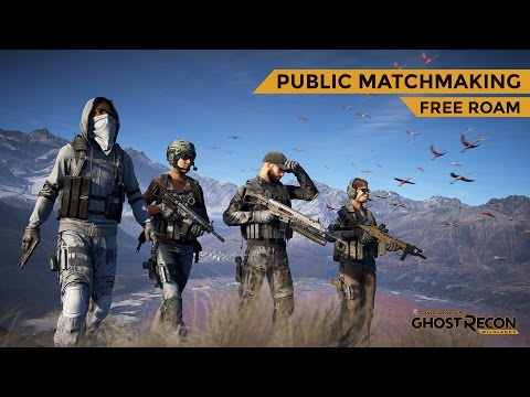 public matchmaking wildlands