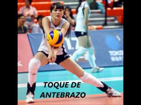 reglas del voleibol profesional