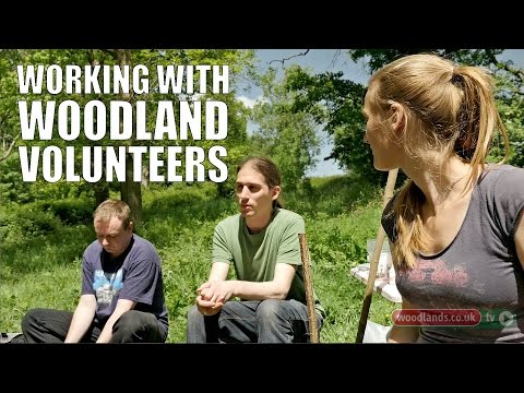 Working with Woodland Volunteers
