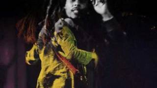 Bob Marley - Punky Reggae Party, Live in Shelton