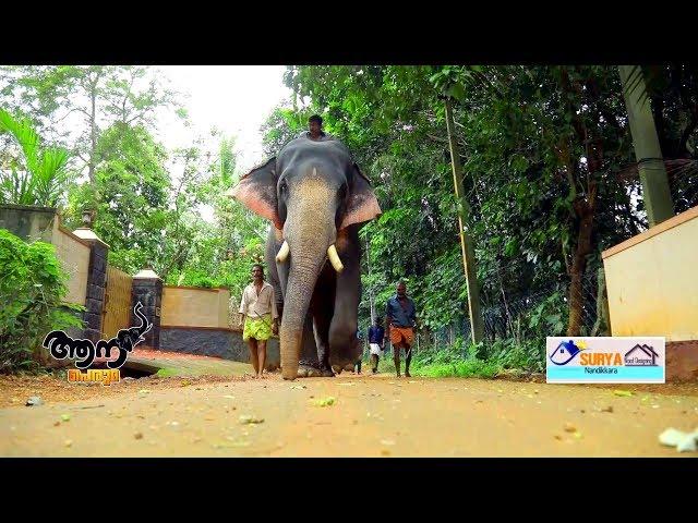 Sreekrishnapuram vijay (aana peruma episode - 25 )