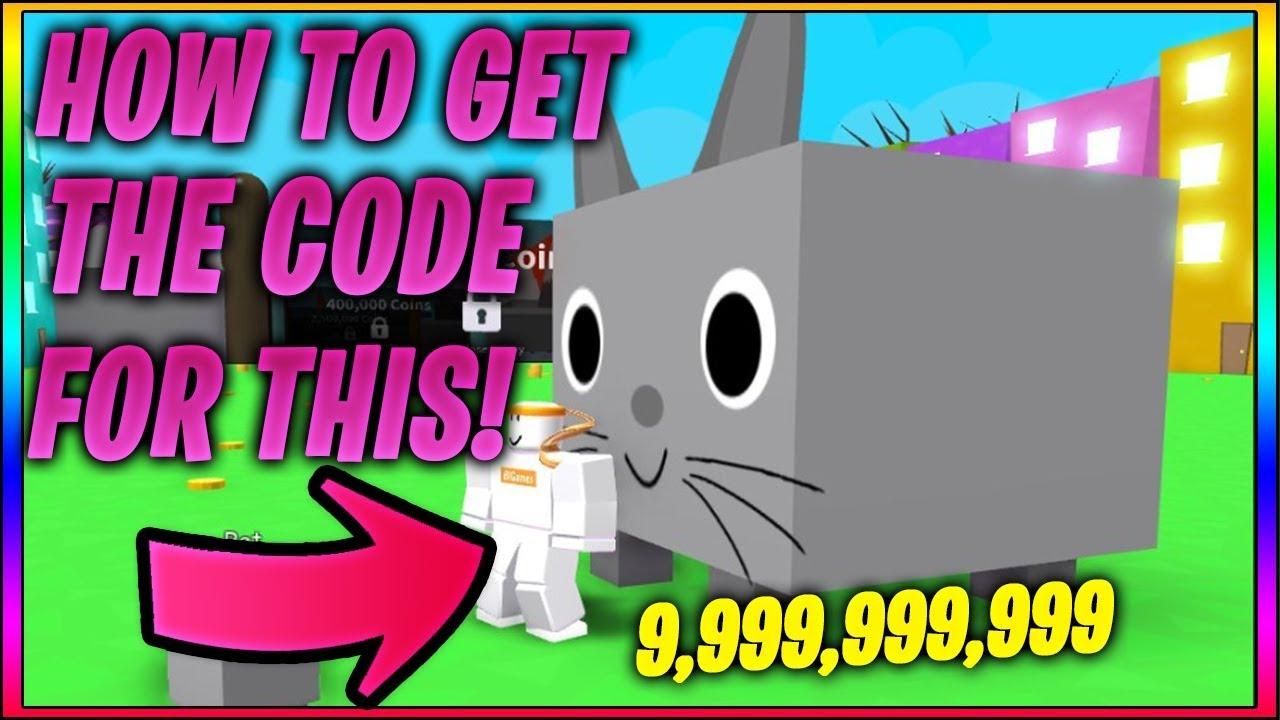 The Most RAREST Code In Pet Simulator! (Roblox)